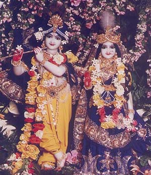 Krishna Consciousness–Hindu Cult or Divine Culture?