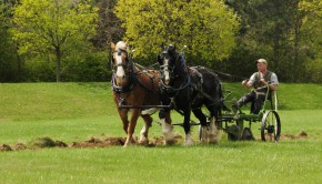 Horse and Plough Farming