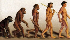 darwins evolution monkey changing into man
