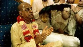 Srila Prabhupada Clapping on Vyassasana with devotees fighting for the peacock fan