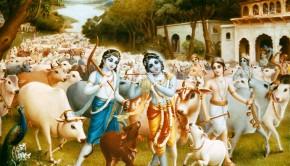 Krishna, Balaram tend the cows