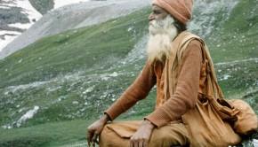 Yogi in the Himalayas