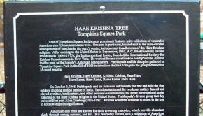 Hare Krishna Prabhupada Tree Sign in Tompkins Square Park New York City