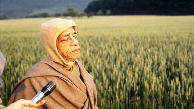 Srila Prabhupada Walking in Field in Germany