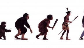 a discussion on darwins theory of evolution The theory of evolution had been around long before darwin's origin of species what new elements made the origin of species so important, and why.