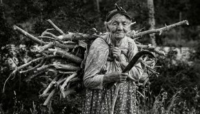 Old woman collecting firewood in forrest