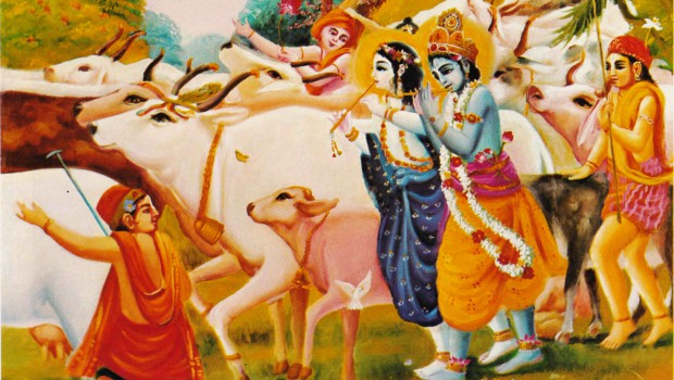 24 Krsna brought forward the cows and played on His flute through the forest of Vrindavana p113