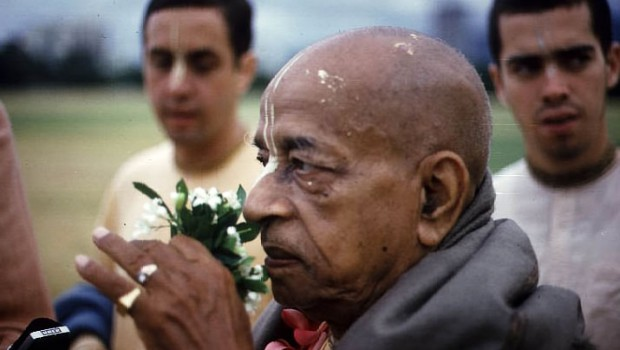 Srila Prabhupada smelling flower with Ambrisa in background