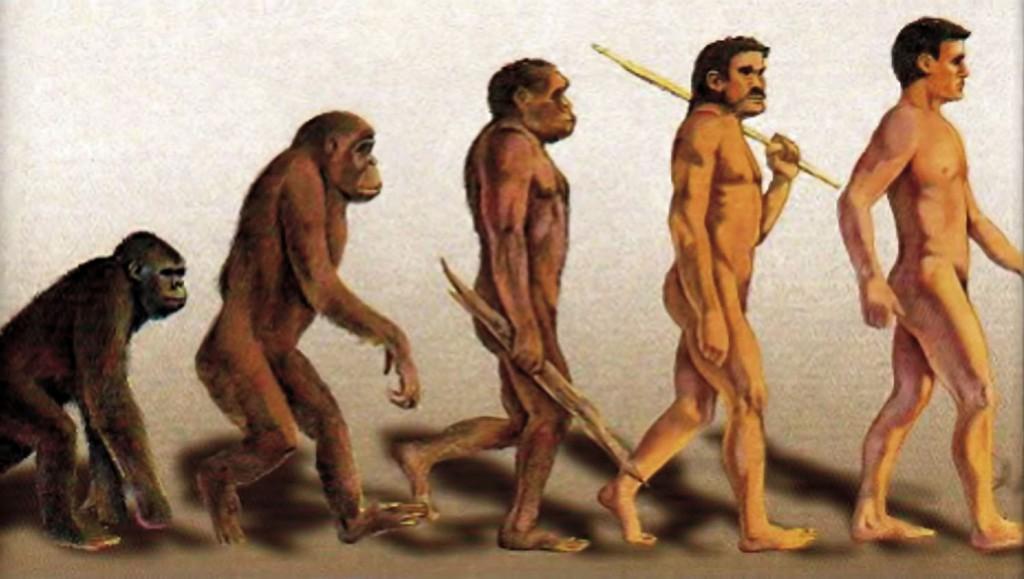 essays on darwinism vs creationism