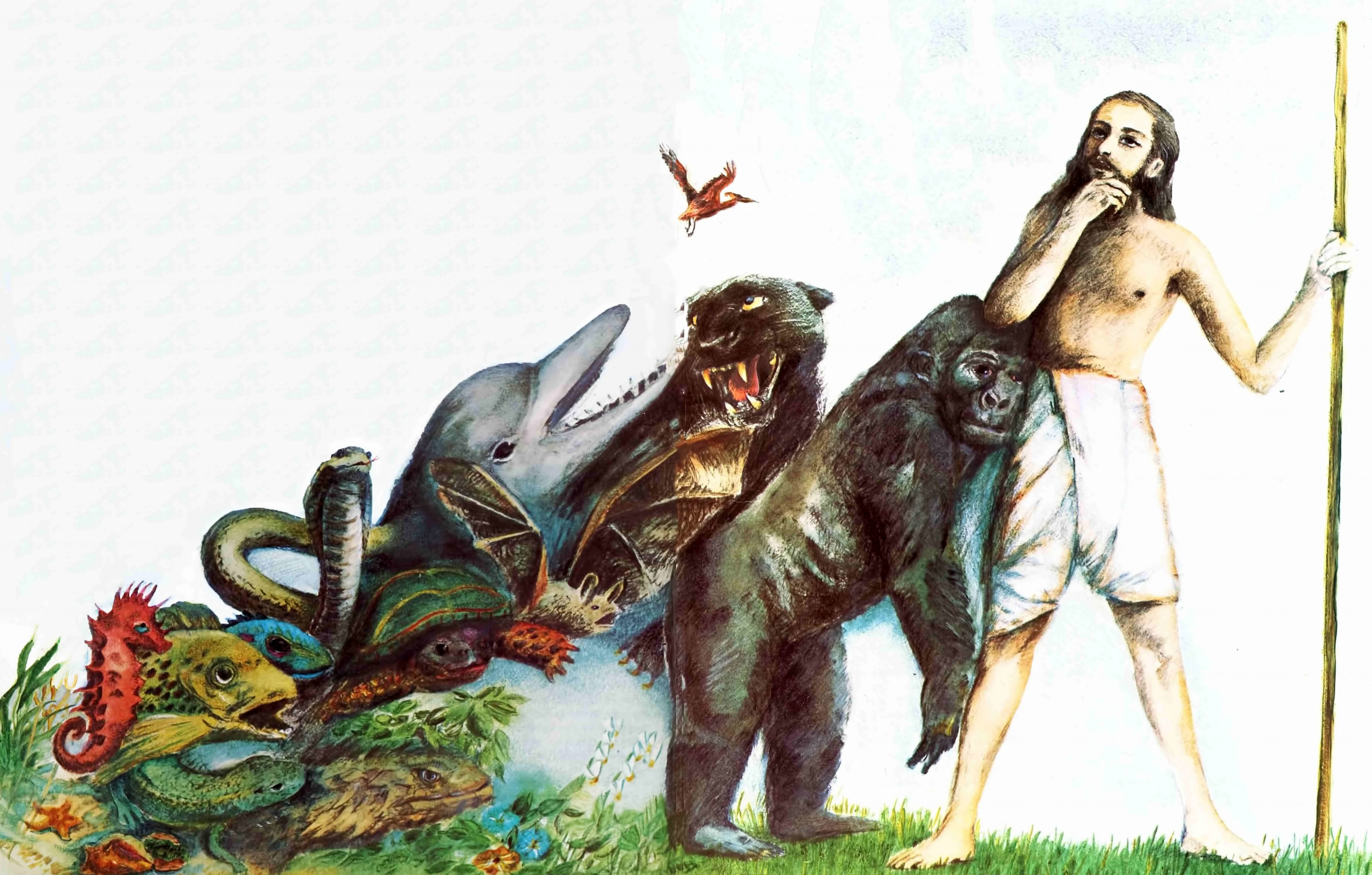 darwinism a crumbling theory org full size image