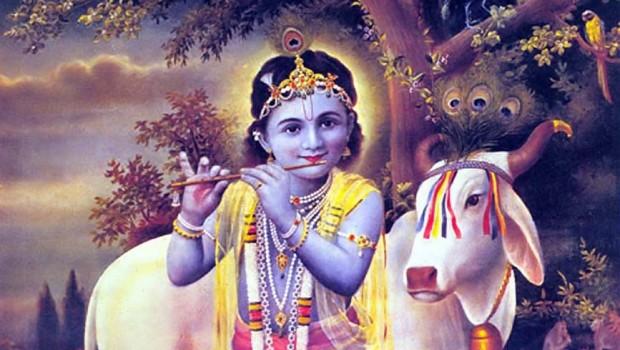 Krishna_Brijbasi_1_Small